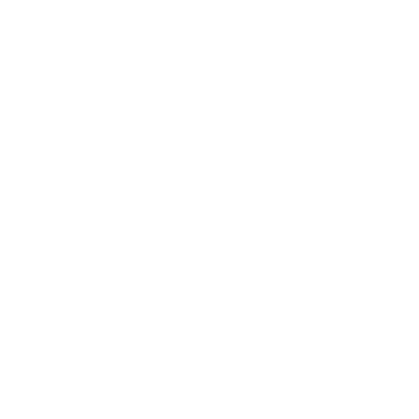 Douglas plankenscherm geimp. 19 planks